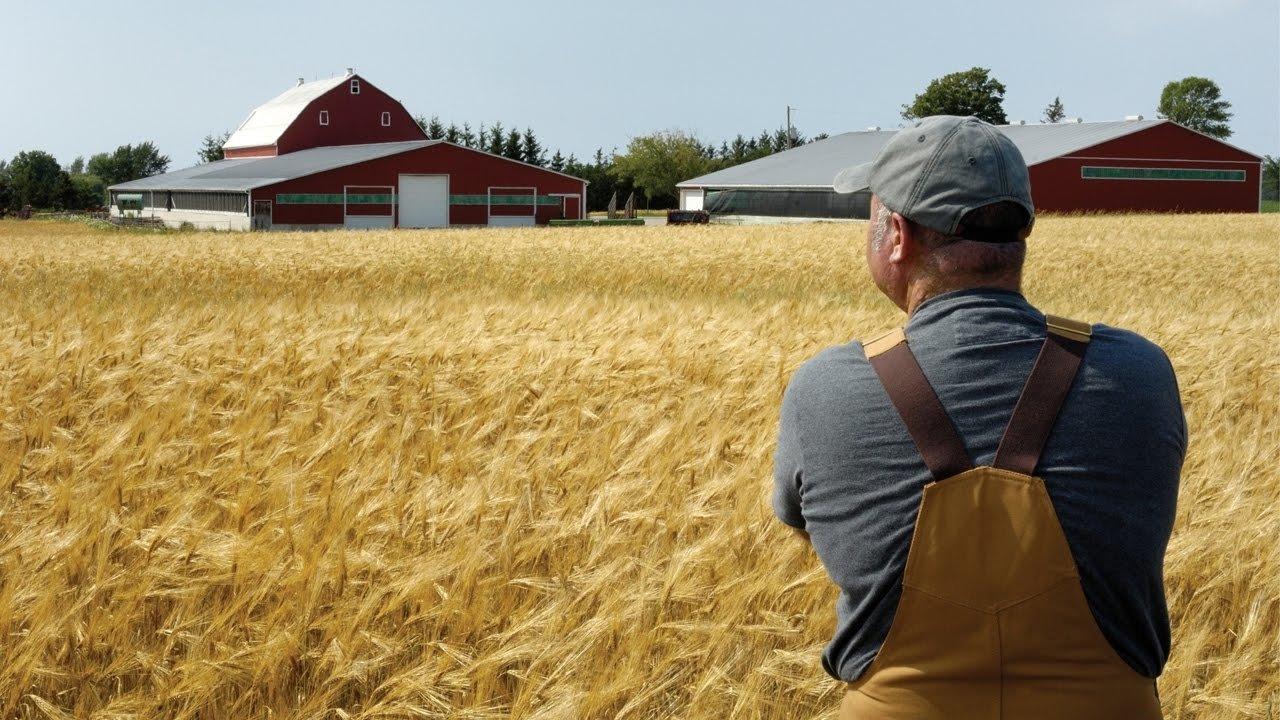 Закон о крестьянском (фермерском) хозяйстве
