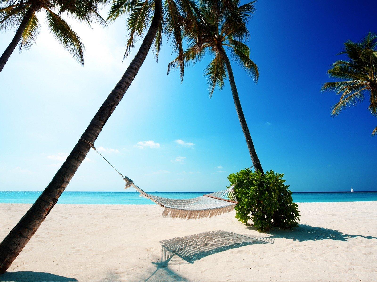 Законодательство о труде отпуск